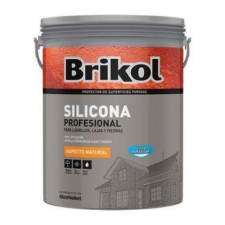 BRIKOL SILICONA PROFESIONAL  4