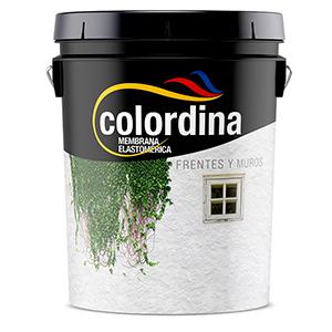 COLORDINA FRENTE ELAST GRIS 1 LTS
